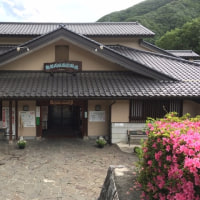 酉年計画ファイナル ~鶏頂山・釈迦ヶ岳~ #2