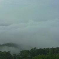 雨霧が広がっていた