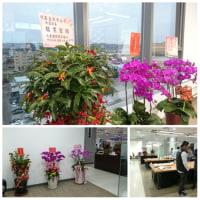 【台湾出張の旅in台北】3日目は南下して提携企業様のパーティに参加!