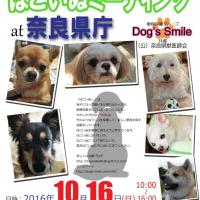 第24回ほごいぬミーティング at 奈良県庁
