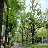 大阪・街歩きⅡ