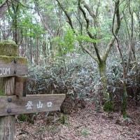2017.6.24 笹ヶ峰 * 高知県土佐町高須より