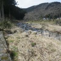 3月25日 恵みの雨とはならず・・・!