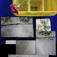 絵手紙教室へ 2017.04.25