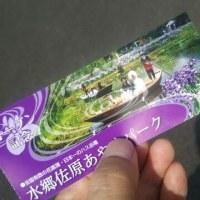 香取市の「水郷佐原あやめパーク」に行きました