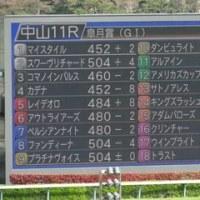 2017年 第77回皐月賞 観戦記