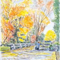 秋も終盤に来ていますが、北の丸公園は真っ盛りのスケッチ