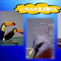 ブログ講習会の参考画像です。 いくつかの画像で 投稿しました。 gif 動画 ・word作成画像 ラベルマイテー画像