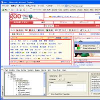 IE Developer Toolbar Beta