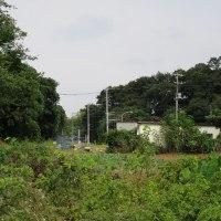 宮内新横浜線を行く(2)未成区間編