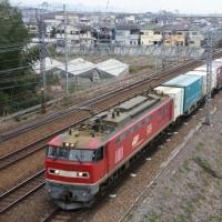 EF510牽引貨物を纏めて(2月15日撮影)