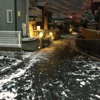 雪やああーー!!