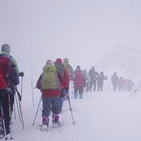 2月25日「オオシラビソ植生密度日本一!樹氷原を歩こう」開催しました。