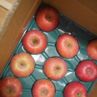 りんごと春菊の炒め物とキムチ鍋でごはん