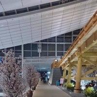 羽田空港国際線で、シチズン ラウンジ発見