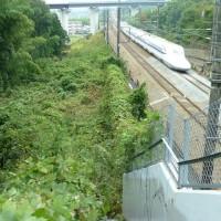 新幹線や島、、、で、うろうろ、、、