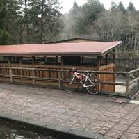自転車朝練