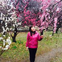 越谷梅林公園の梅