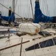 沖縄から航海を始めます