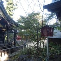 武蔵御嶽神社本殿・奥宮遥拝所
