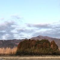 今朝の足尾山