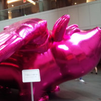 ピンク色の象さん