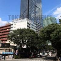 セントラルパークタワーラトゥール新宿