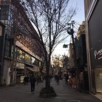 京都は黄昏時がいい、、、、