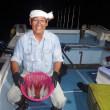 2017年7月20日(昼釣り,夜釣り)パイン5号の釣果