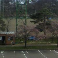 上越地区講習会(2013春)
