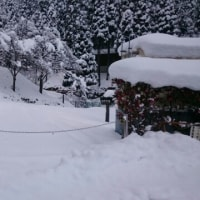 雪のトレイル
