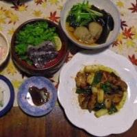 猫と文鳥のつぶやき&夕ご飯。