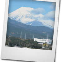クリスマスツリーと富士山