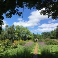 ガーデン、森、自然に癒されて