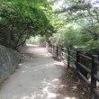 甲山森林公園に行きやした