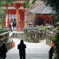 2月の奈良公園便りです!・・・春日大社 奈良瑠璃絵