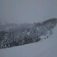 一日、小雪