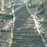 羽黒山表参道 石段登り その2