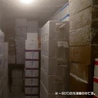 築地の地下には「放射能マグロの山」・豊洲の地下には「毒カス」!!