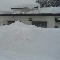 雪に潰される?