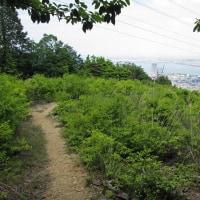 42 高塚山から東西千頭岳を経て音羽山 2017.05.23