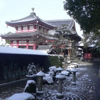 護国院のお庭の雪
