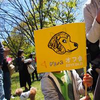 ドコノコオフ会 in 砧公園
