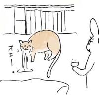 何も食べないビワコちゃん 1
