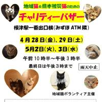 猫たちのためのチャリティーバザー