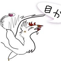 �����5/24�ˤޤǤǤ��͡�������Ÿ�˹ԤäƤ��ޤ��������������ϡ֤��ܤ� de ���Ϥ� ����Ź�פǤ����Ҥ��͡�