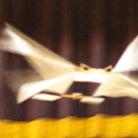 第21回 IAC-ASO飛行会 報告