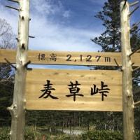 10.22〜23りんご狩り&麦草峠・白駒の池