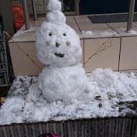 雪まみれの週末