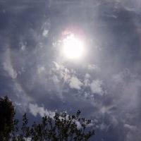 太陽を囲むように発生した光の輪